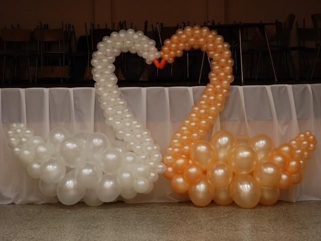 Золотой и белый лебедь из шаров